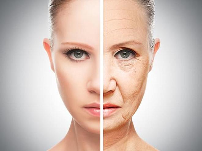 Cách trị lão hóa da mặt cực đơn giản